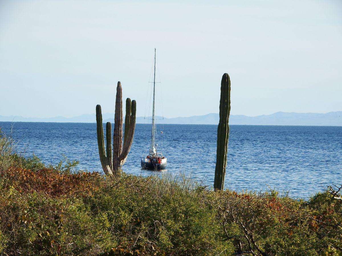 Remote Island Cerralvo-fantastic
