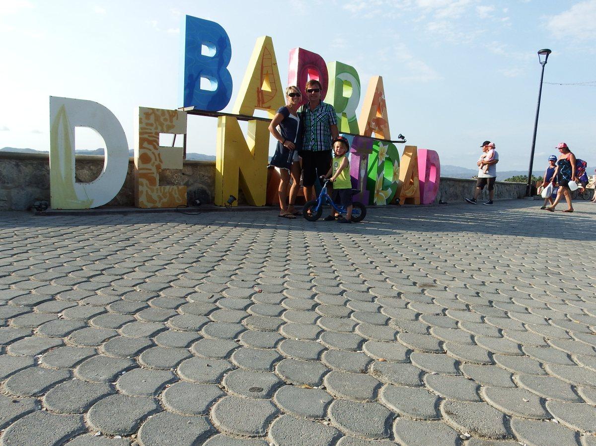 Barra de Navididad