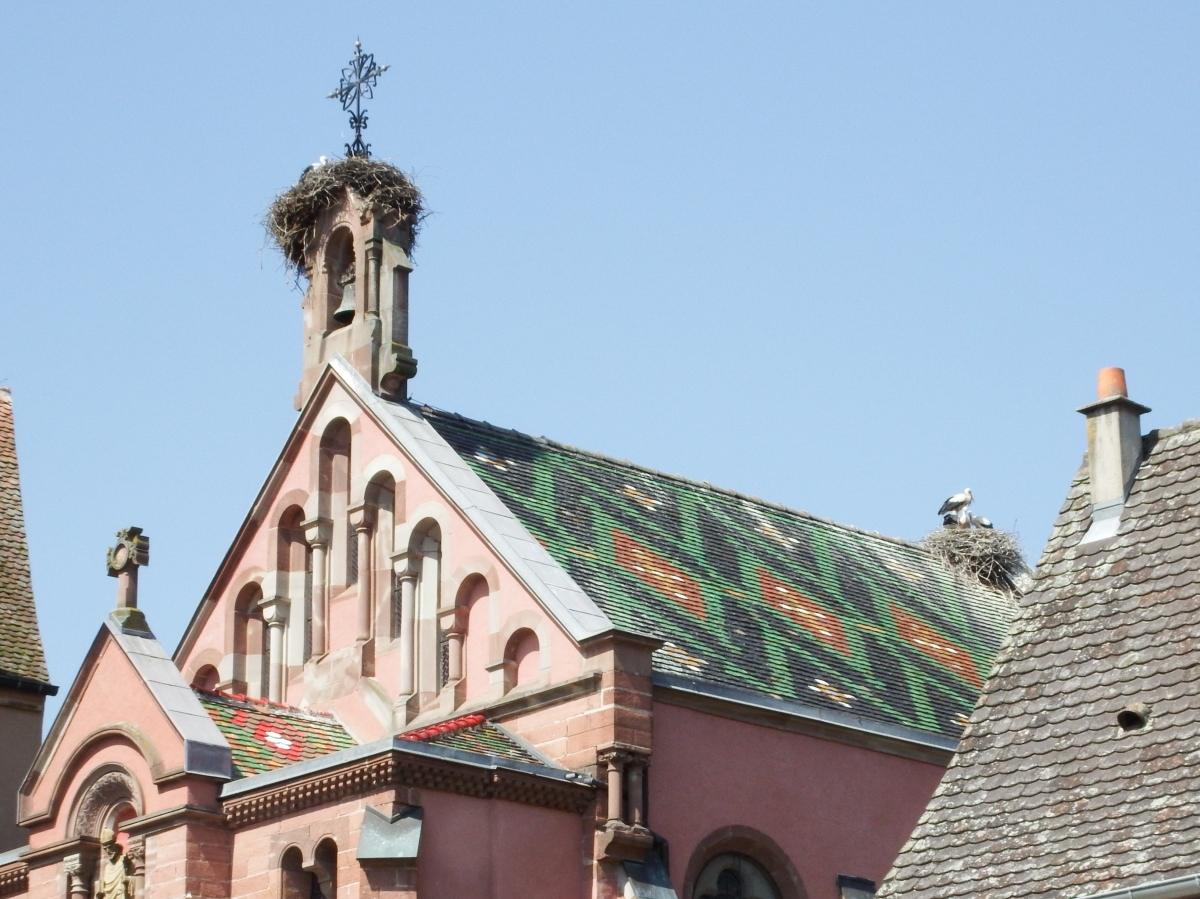 Eguisheim, Alsace-France